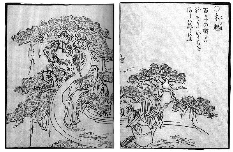 Kodama The Tree Spirit 百物語怪談会 Hyakumonogatari Kaidankai