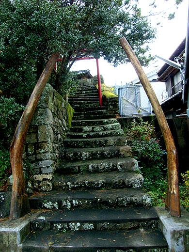 Whalebone Tori Japan