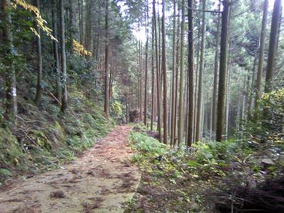 Hidarugami Road