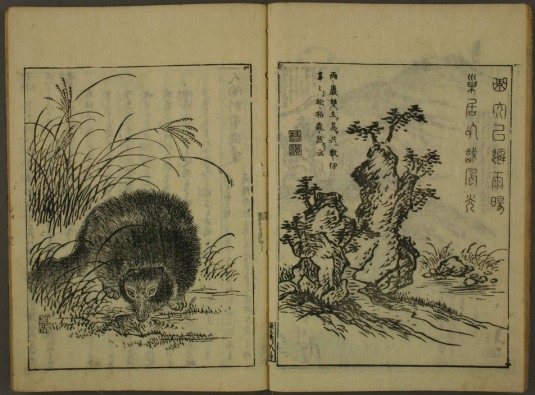 Tanuki_Encyclopedia